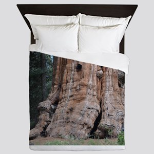 Giant Sequoia Queen Duvet